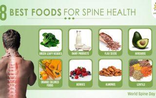 Best Foods for Spine Health